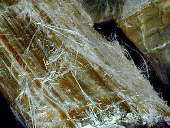Asbestos Fibers Table With Standards : Naturally occuring asbestos