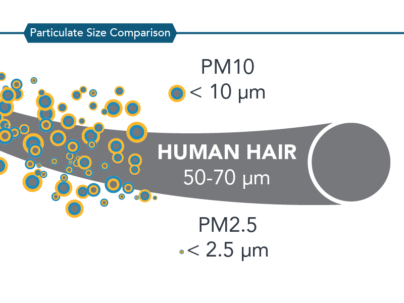 particulate size comparison