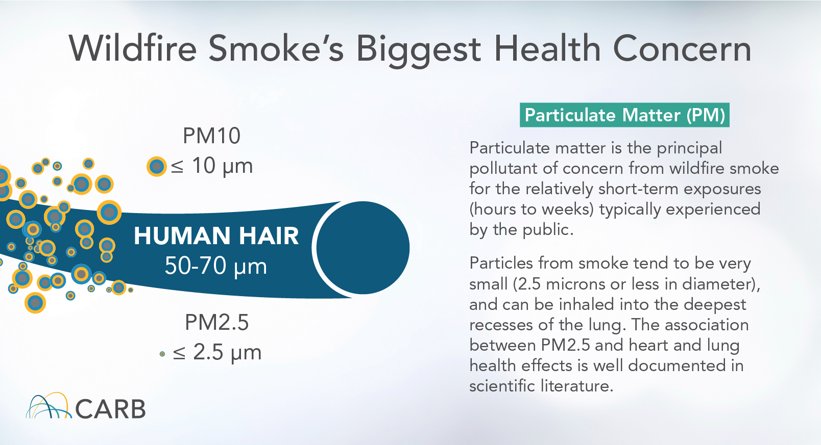 wildfire smoke health concerns