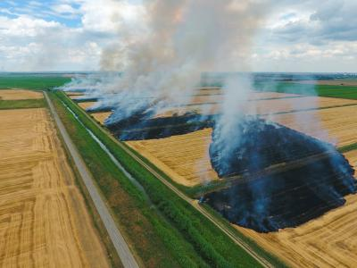 agriculture burning in wheat field