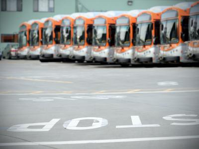 buses in a line
